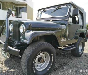 Ford - Jeep  Willys 1965/1965